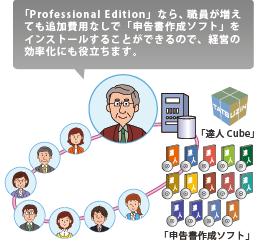 「申告書作成ソフト」最上位グレードのProfessional Edition(プロフェッショナル・エディション)ならデータベースを他のパソコンと共有できるので、申告データをサーバやパソコンで一元管理することが可能です。